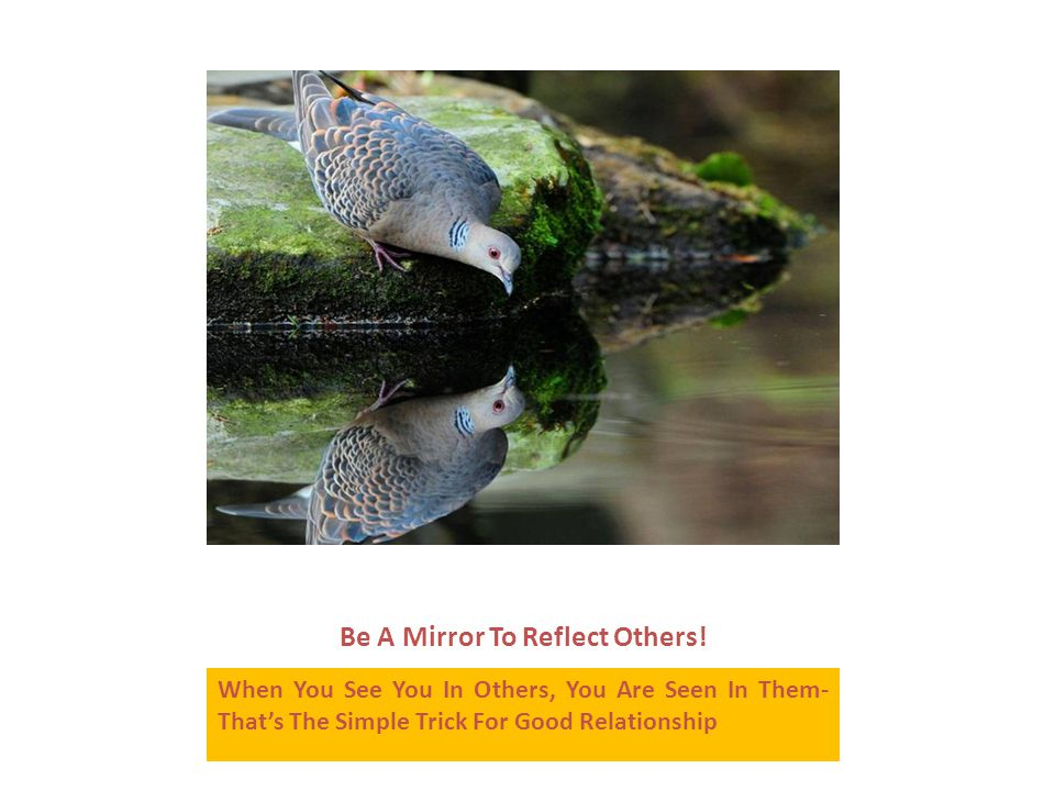 Be A Mirror To Reflect Others.