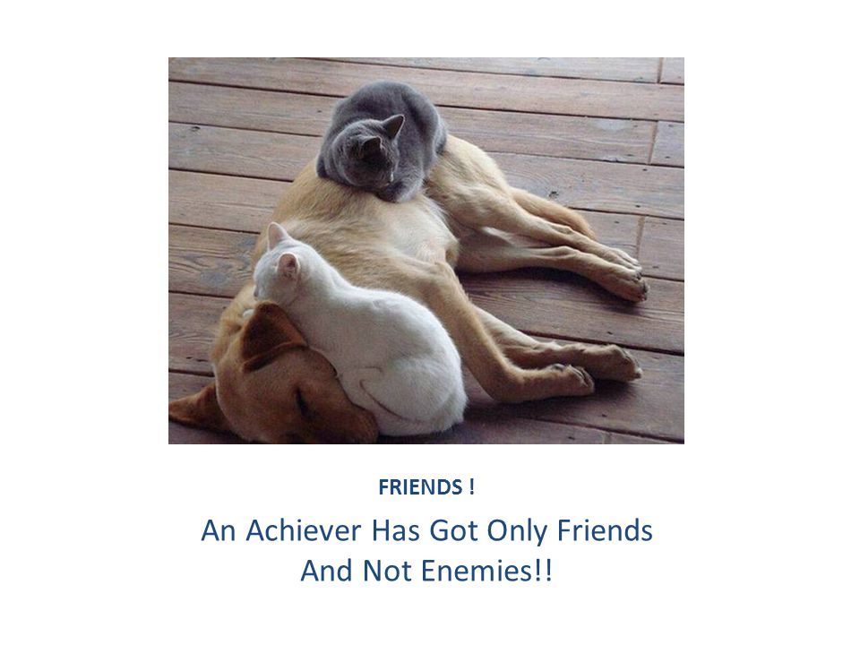 FRIENDS ! An Achiever Has Got Only Friends And Not Enemies!!