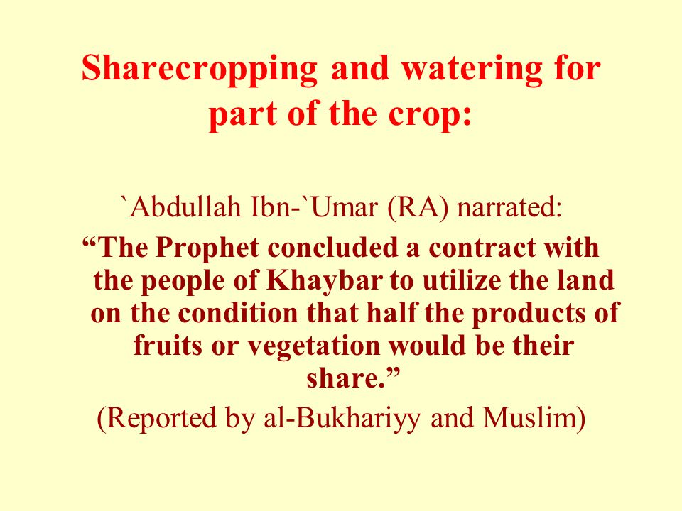 Sharecropping and watering for part of the crop: `Abdullah Ibn-`Umar (RA) narrated: The Prophet concluded a contract with the people of Khaybar to utilize the land on the condition that half the products of fruits or vegetation would be their share. (Reported by al-Bukhariyy and Muslim)