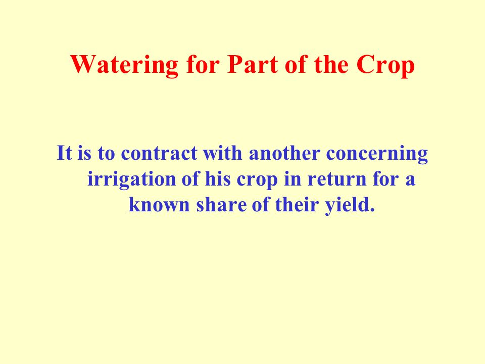 Watering for Part of the Crop It is to contract with another concerning irrigation of his crop in return for a known share of their yield.