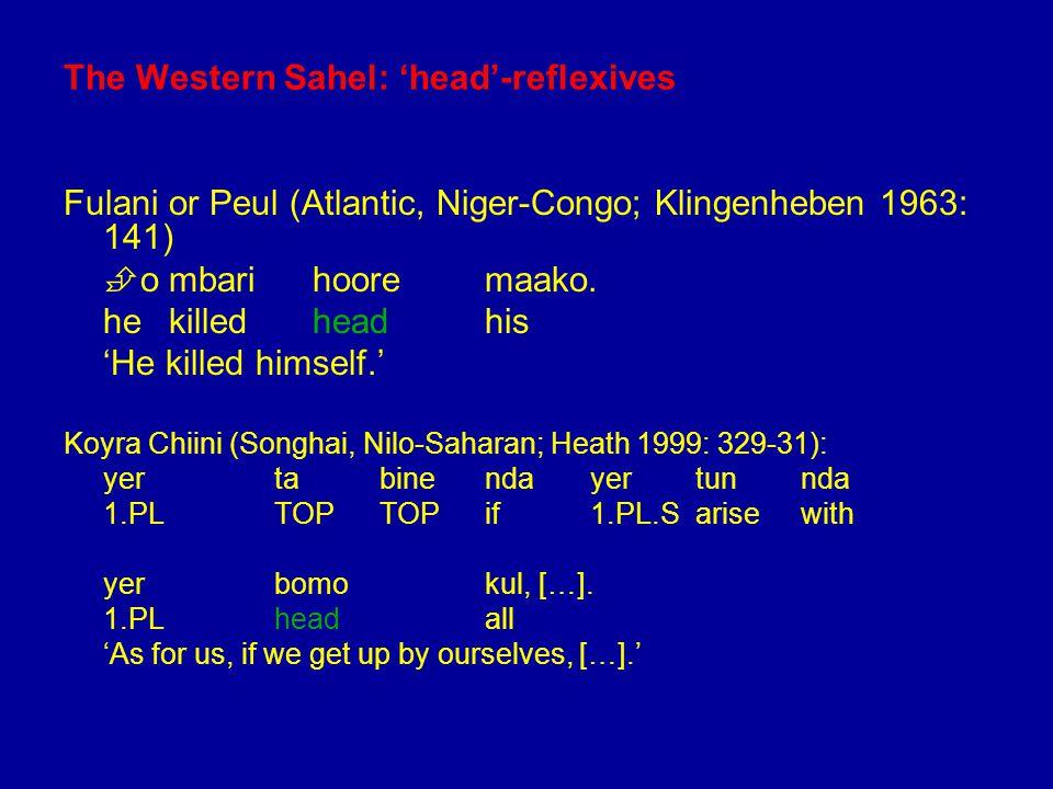 The Western Sahel: 'head'-reflexives Fulani or Peul (Atlantic, Niger-Congo; Klingenheben 1963: 141)  ombari hooremaako.