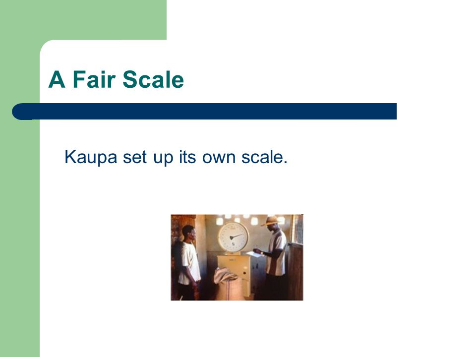 A Fair Scale Kaupa set up its own scale.