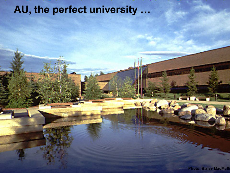 AU, the perfect university … Photo: Blaise MacMullin