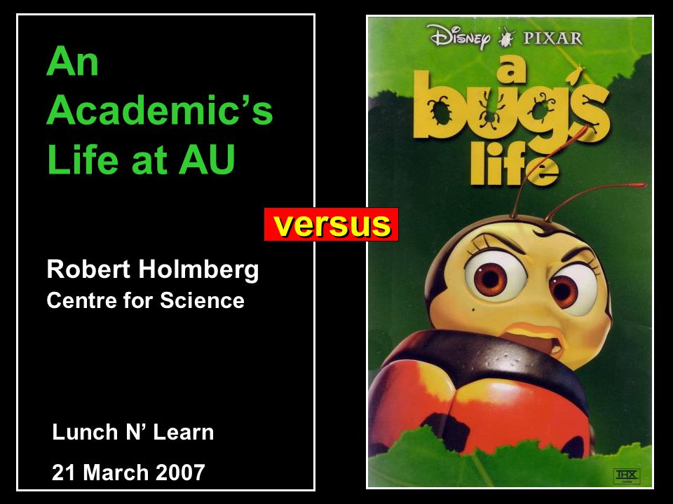 An Academic's Life at AU Robert Holmberg Centre for Science Lunch N' Learn 21 March 2007 versus