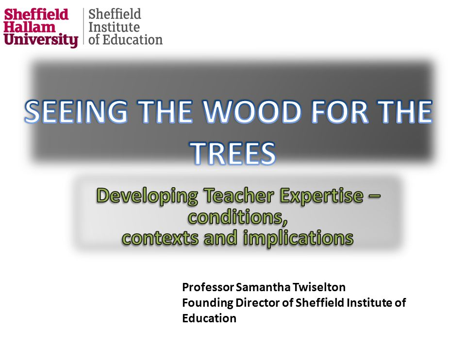 Professor Samantha Twiselton Director of Sheffield Institute of Education Professor Samantha Twiselton Founding Director of Sheffield Institute of Education