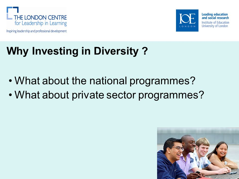 Why Investing in Diversity ? What about the national programmes? What about private sector programmes?