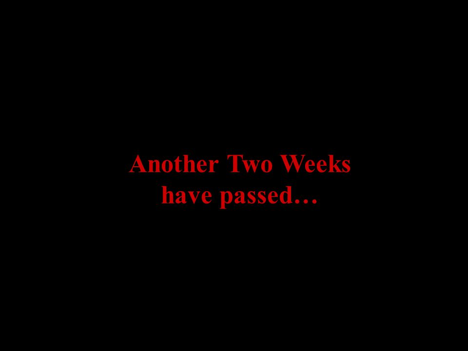 Another Two Weeks have passed…