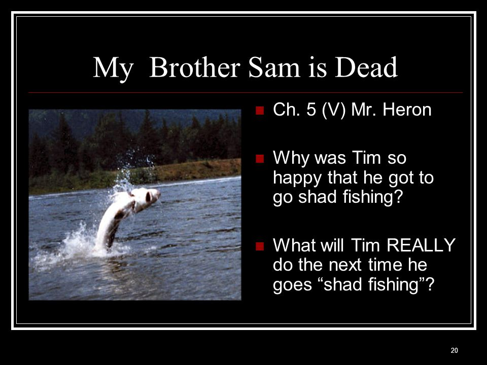 """20 My Brother Sam is Dead Ch. 5 (V) Mr. Heron Why was Tim so happy that he got to go shad fishing? What will Tim REALLY do the next time he goes """"shad"""