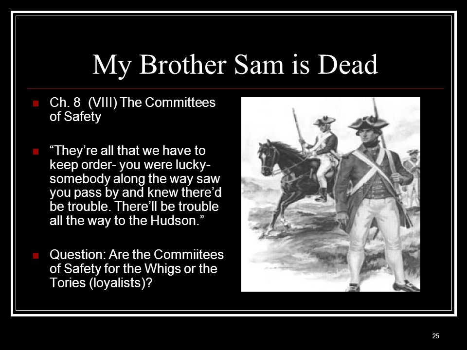 """25 My Brother Sam is Dead Ch. 8 (VIII) The Committees of Safety """"They're all that we have to keep order- you were lucky- somebody along the way saw yo"""