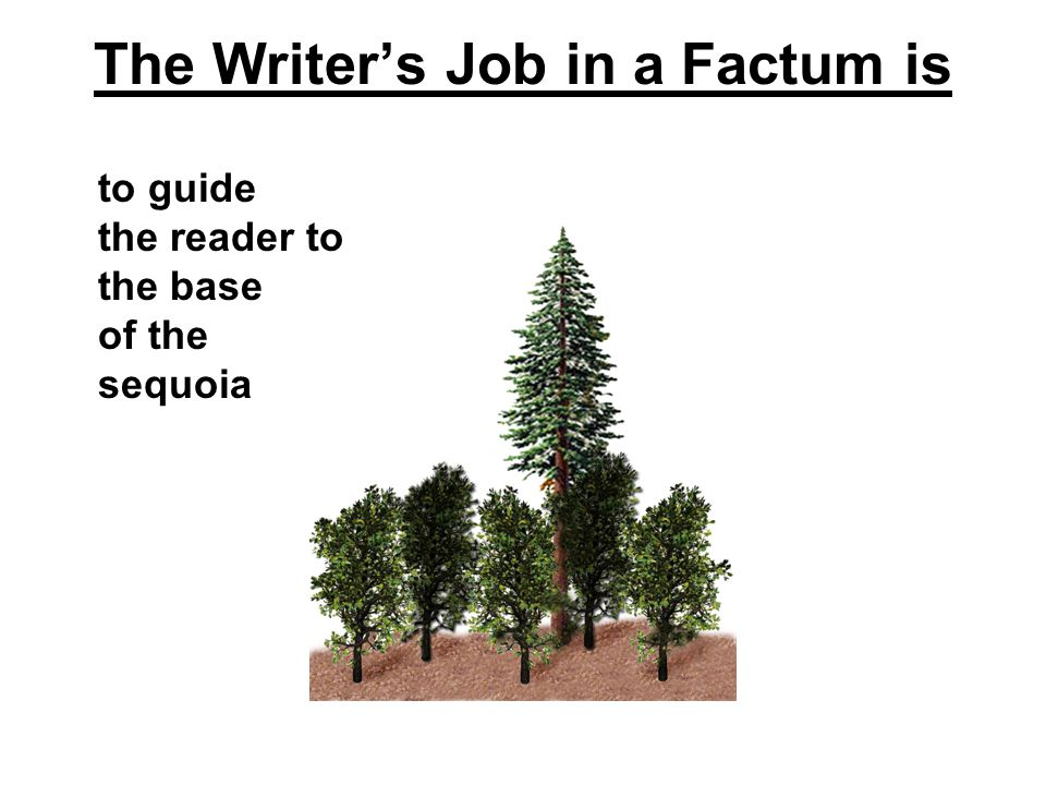 The Writer's Job in a Factum is to guide the reader to the base of the sequoia