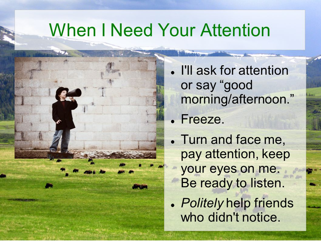 When I Need Your Attention I ll ask for attention or say good morning/afternoon. Freeze.