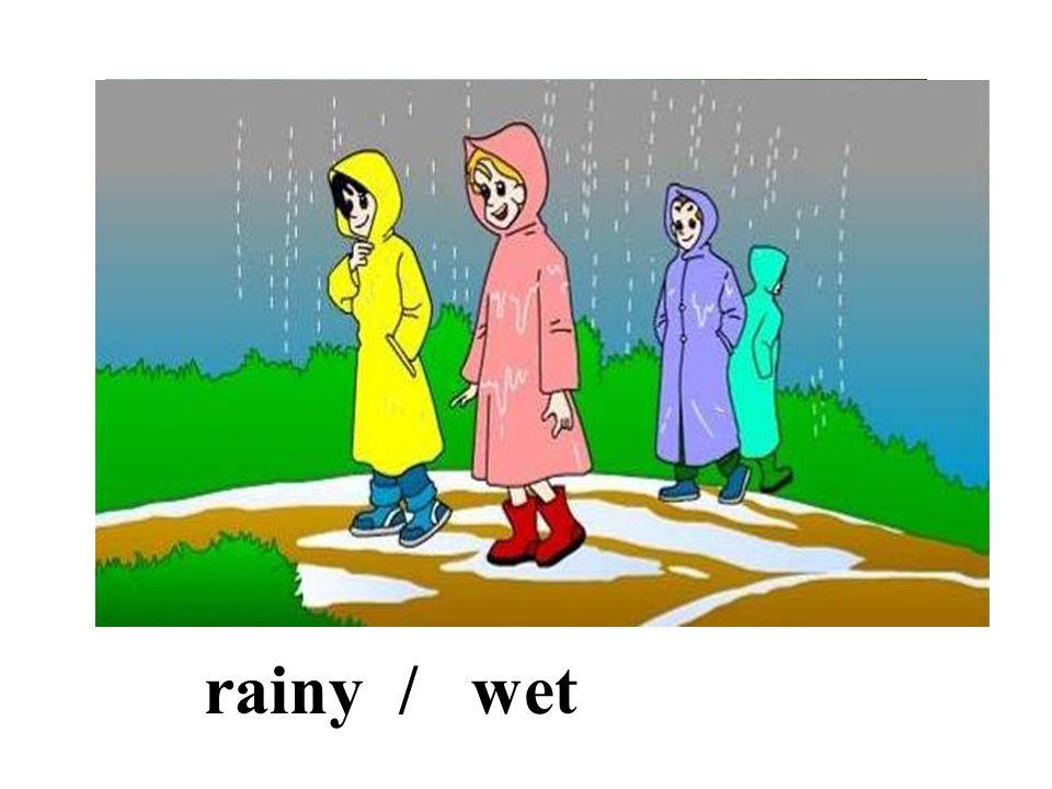 rainy / wet