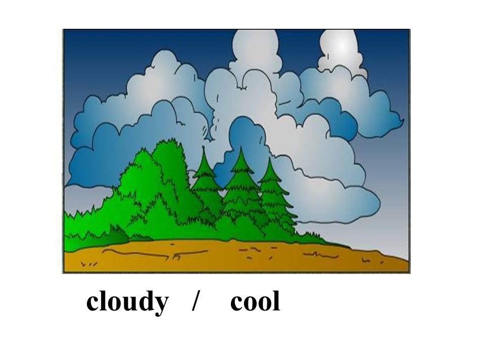 cloudy / cool