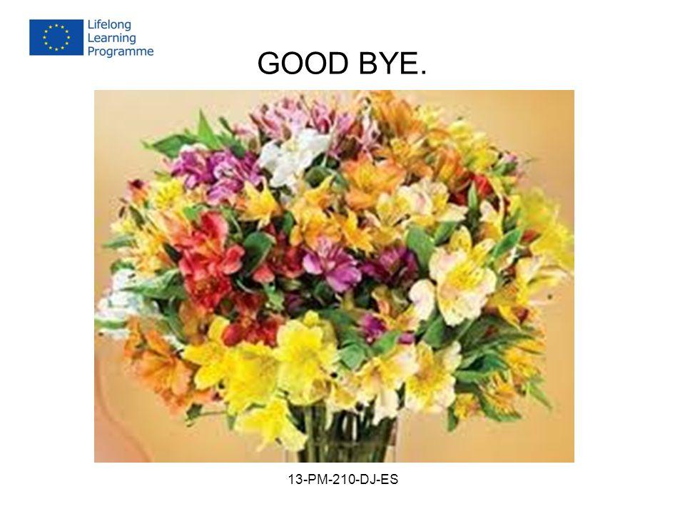 GOOD BYE. 13-PM-210-DJ-ES