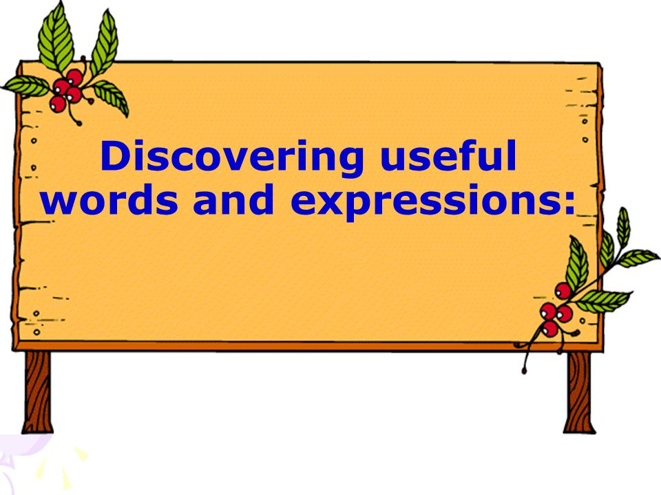Discovering useful words and expressions: