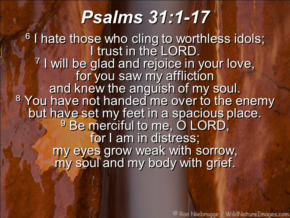Psalms 31:1-17 10 My life is consumed by anguish and my years by groaning; my strength fails because of my affliction, and my bones grow weak….