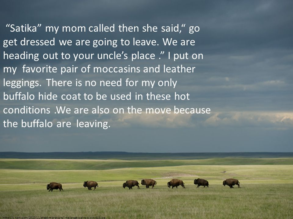 http://s.ngm.com/2010/11/great-migrations/img/great-plains-bison-615.jpg Satika my mom called then she said, go get dressed we are going to leave.