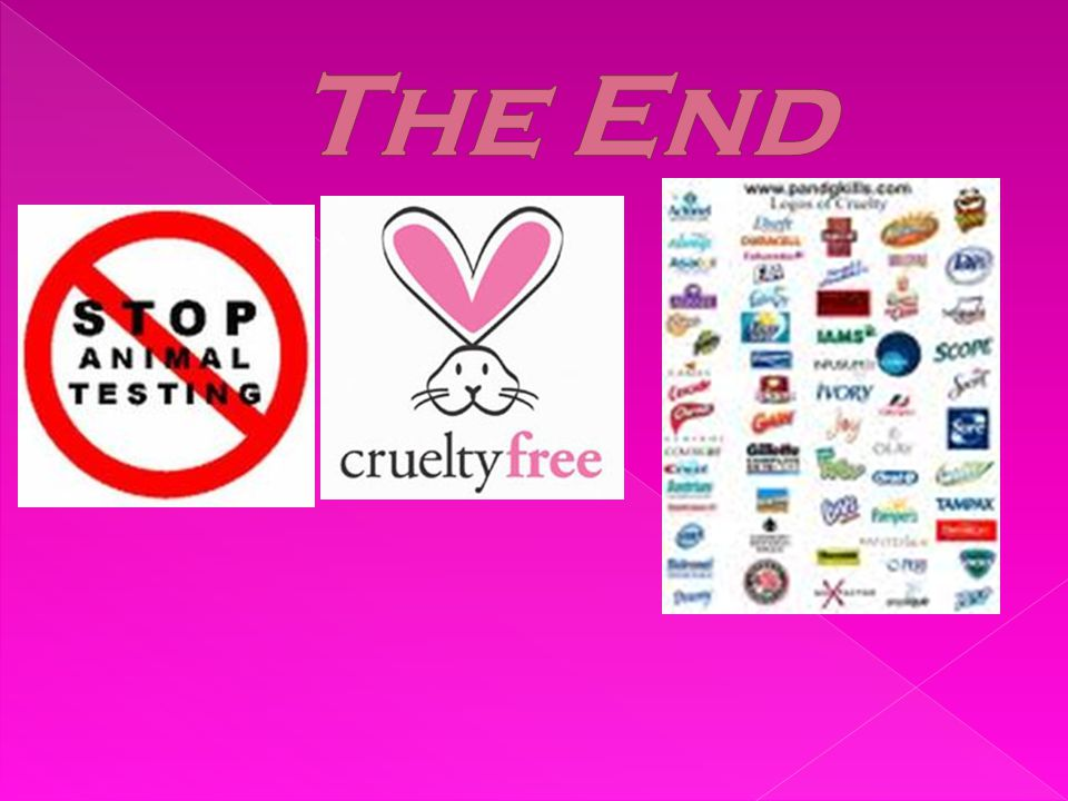  Buy cruelty free products (check the label)  Join a animal rights organizations (Like PETA)  Sign a online petition  Write to a company that tests on animals