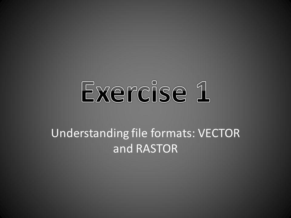 Understanding file formats: VECTOR and RASTOR