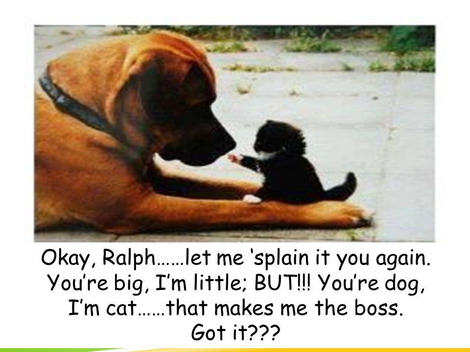 Okay, Ralph……let me 'splain it you again. You're big, I'm little; BUT!!.