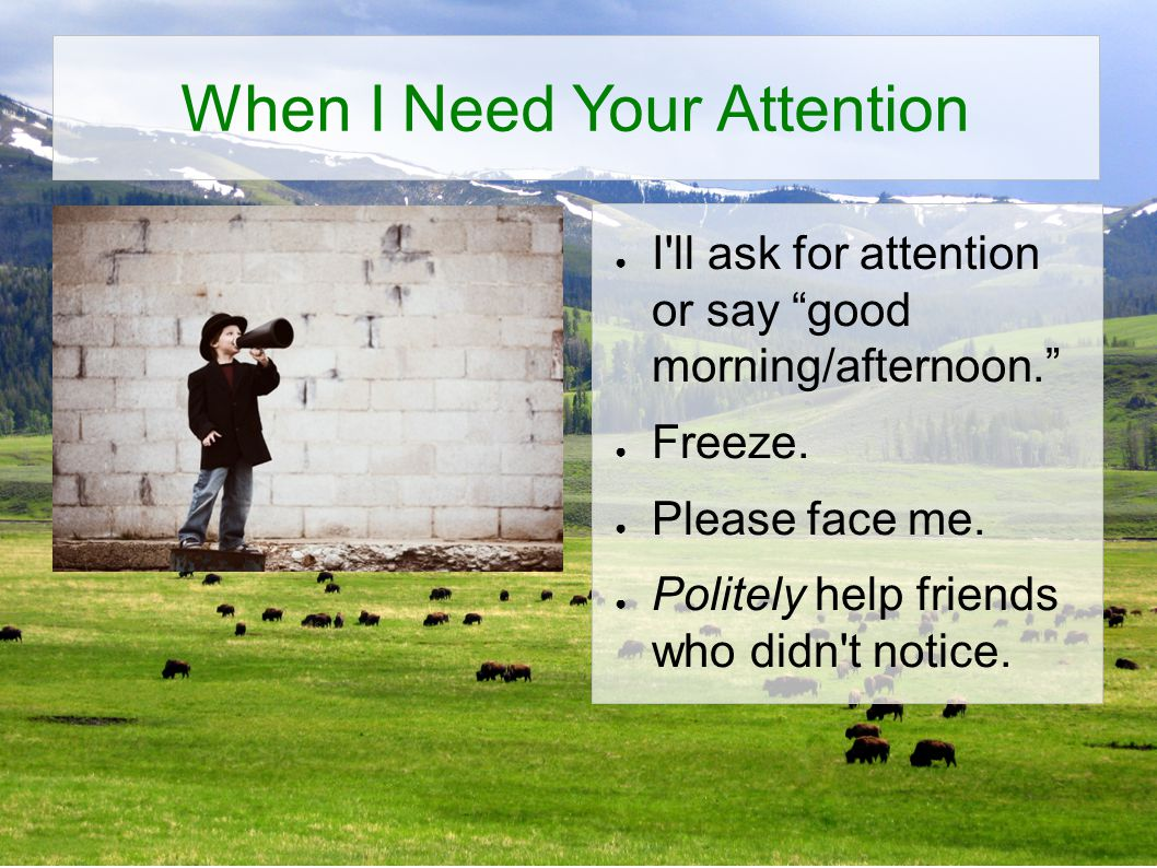 When I Need Your Attention ● I ll ask for attention or say good morning/afternoon. ● Freeze.