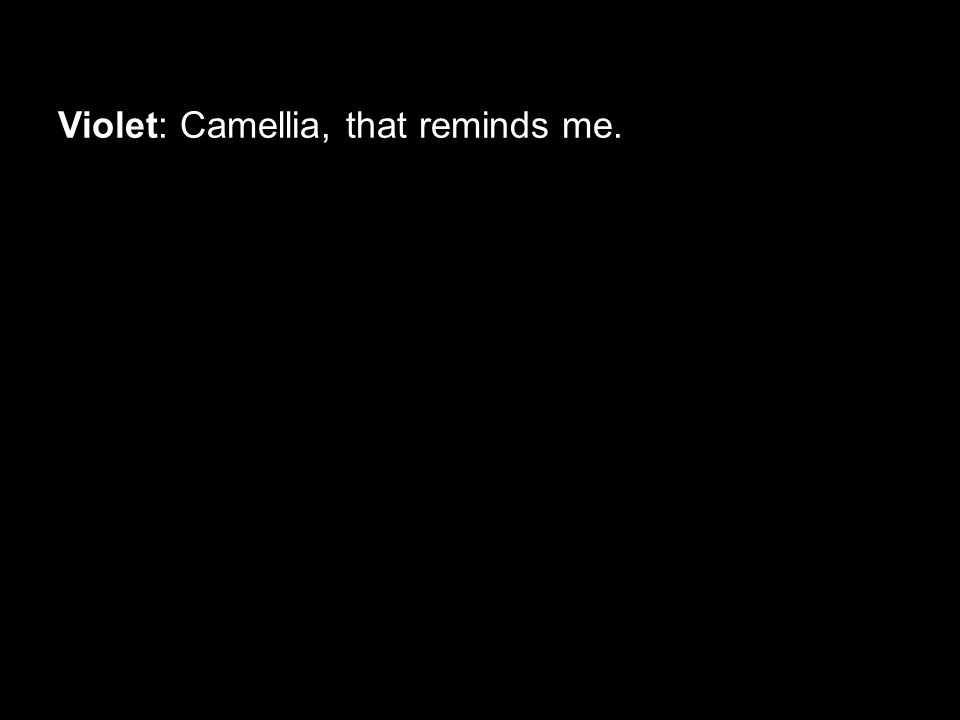 Violet: Camellia, that reminds me.