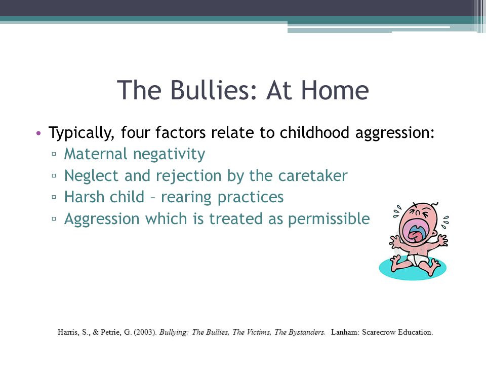 The Bullies: At Home Typically, four factors relate to childhood aggression: ▫ Maternal negativity ▫ Neglect and rejection by the caretaker ▫ Harsh ch