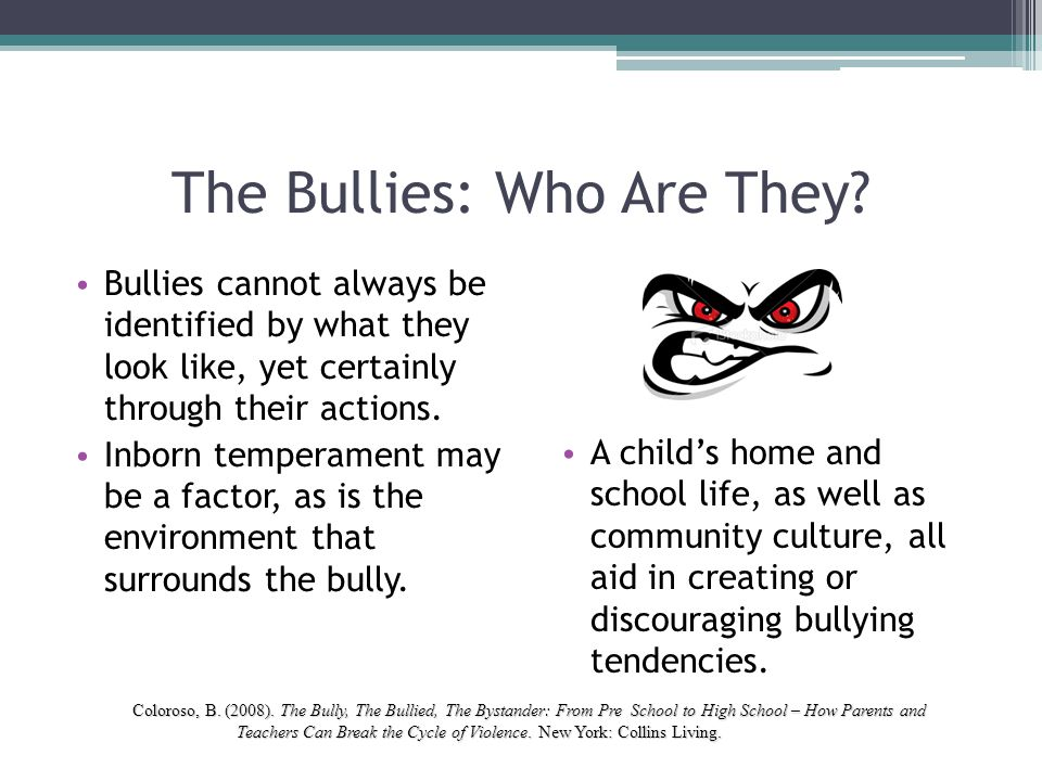 The Bullies: Who Are They? Bullies cannot always be identified by what they look like, yet certainly through their actions. Inborn temperament may be