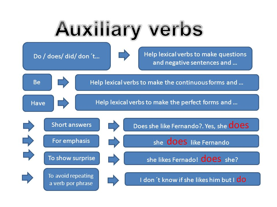 Do / does/ did/ don ´t… Help lexical verbs to make questions and negative sentences and … Be Help lexical verbs to make the continuous forms and … Have Help lexical verbs to make the perfect forms and … Short answers Does she like Fernando .