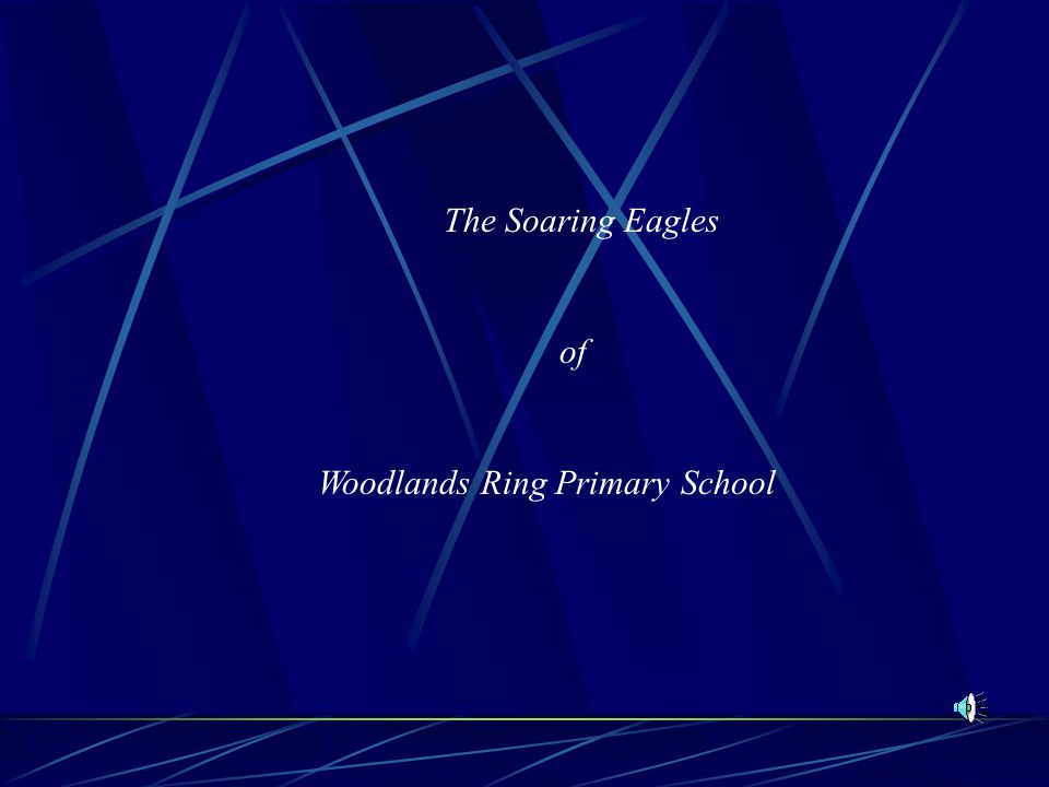The Soaring Eagles of Woodlands Ring Primary School