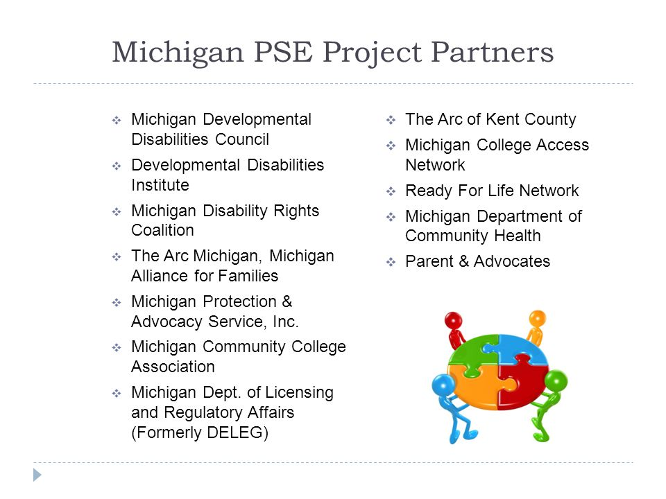 Michigan PSE Project Partners  Michigan Developmental Disabilities Council  Developmental Disabilities Institute  Michigan Disability Rights Coalition  The Arc Michigan, Michigan Alliance for Families  Michigan Protection & Advocacy Service, Inc.