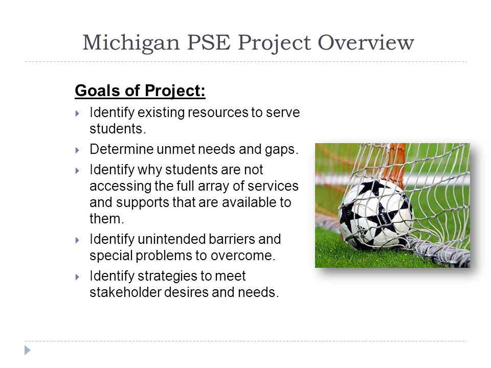 Michigan PSE Project Overview Goals of Project:  Identify existing resources to serve students.