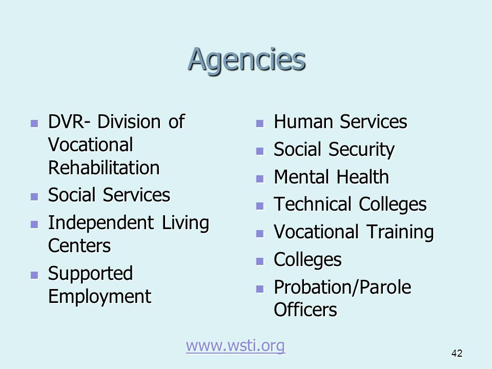 42 Agencies DVR- Division of Vocational Rehabilitation DVR- Division of Vocational Rehabilitation Social Services Social Services Independent Living C