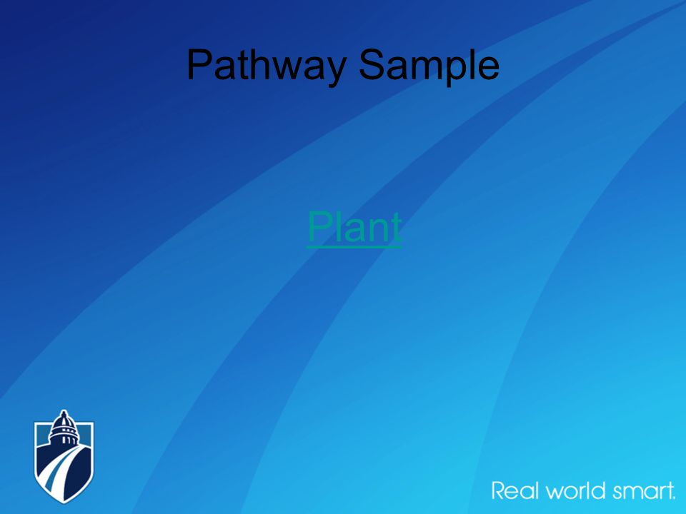 Pathway Sample Plant