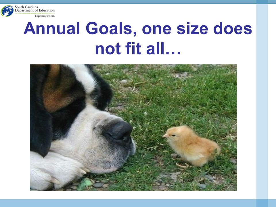 Annual Goals, one size does not fit all…
