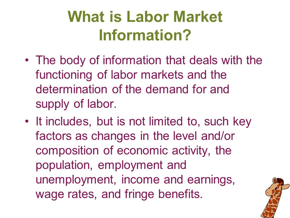 What is Labor Market Information? The body of information that deals with the functioning of labor markets and the determination of the demand for and