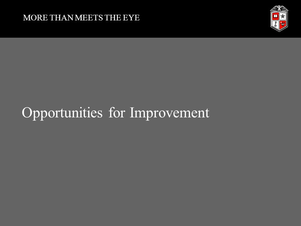 MORE THAN MEETS THE EYE Opportunities for Improvement