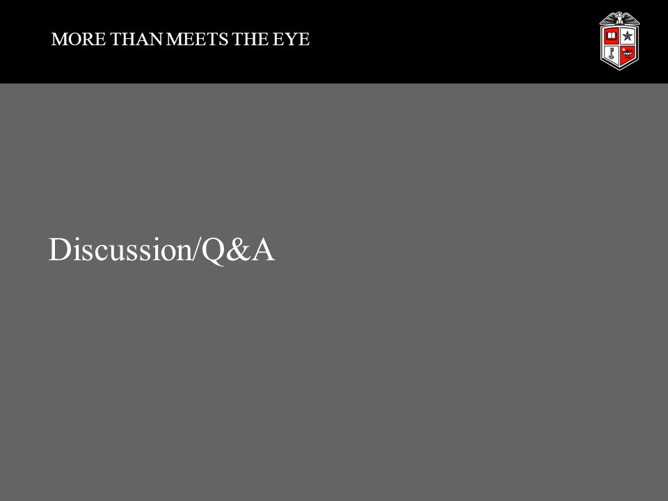MORE THAN MEETS THE EYE Discussion/Q&A