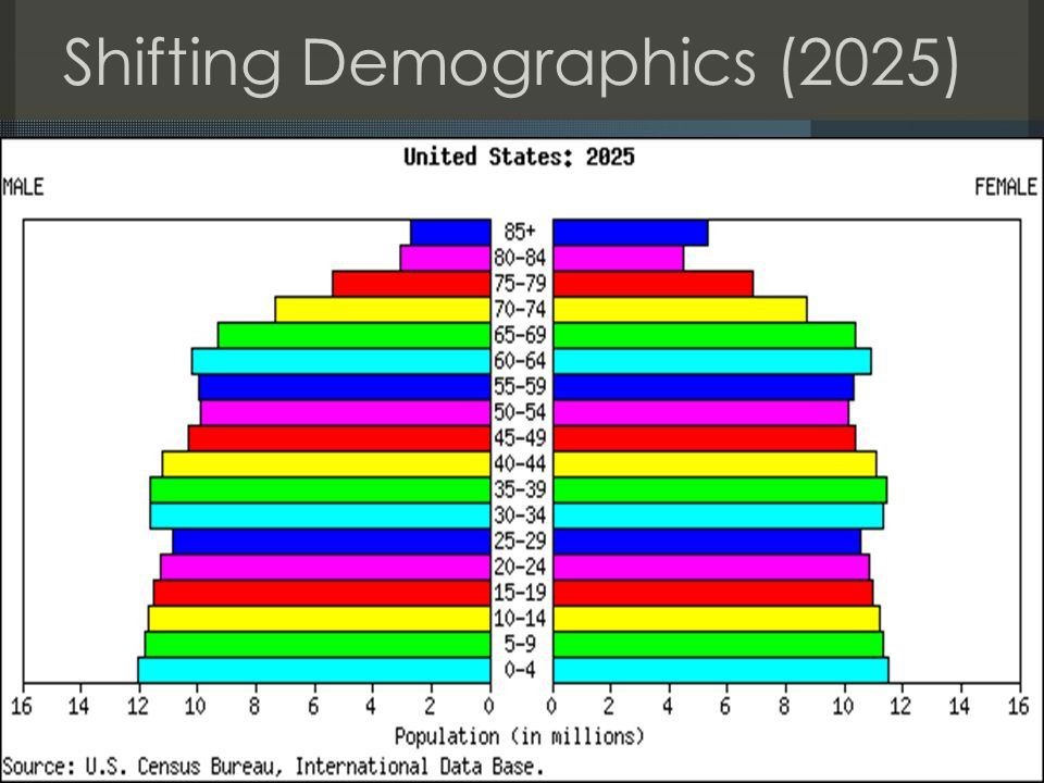 Shifting Demographics (2025)