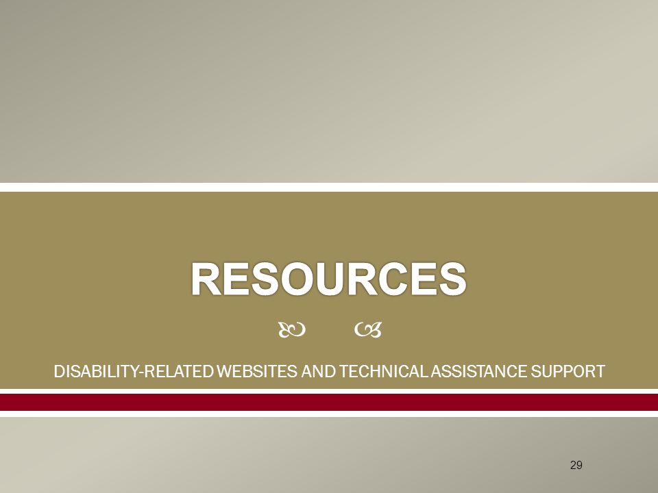  DISABILITY-RELATED WEBSITES AND TECHNICAL ASSISTANCE SUPPORT 29