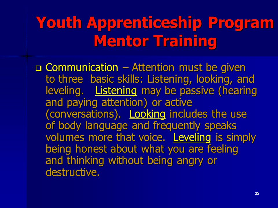 35 Youth Apprenticeship Program Mentor Training  Communication – Attention must be given to three basic skills: Listening, looking, and leveling.