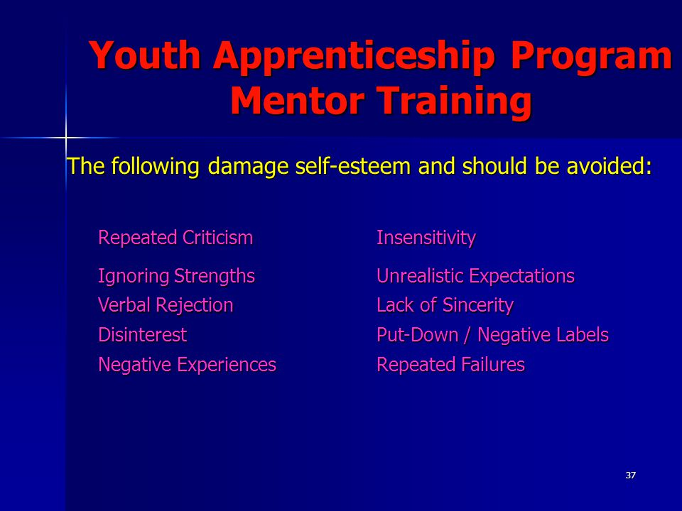 37 Youth Apprenticeship Program Mentor Training The following damage self-esteem and should be avoided: Repeated Criticism Insensitivity Ignoring Strengths Unrealistic Expectations Verbal Rejection Lack of Sincerity Disinterest Put-Down / Negative Labels Negative Experiences Repeated Failures