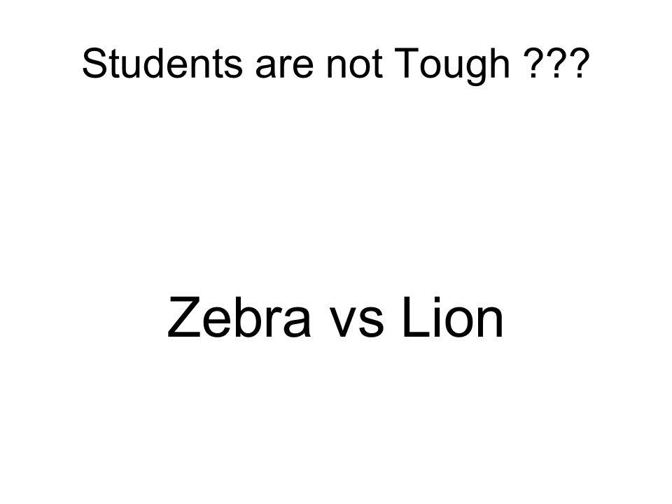 Students are not Tough Zebra vs Lion