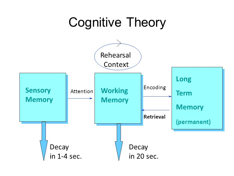 Cognitive Theory Sensory Memory Working Memory Long Term Memory (permanent) Attention Encoding Retrieval Decay in 20 sec. Decay in 1-4 sec. Rehearsal