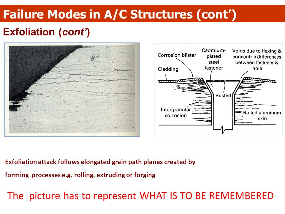 Exfoliation (cont') Failure Modes in A/C Structures (cont') Exfoliation attack follows elongated grain path planes created by forming processes e.g. r