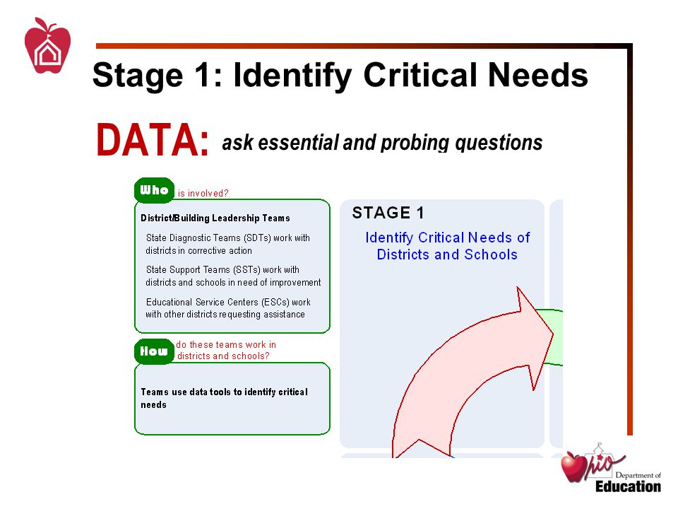 Stage 1: Identify Critical Needs DATA: ask essential and probing questions