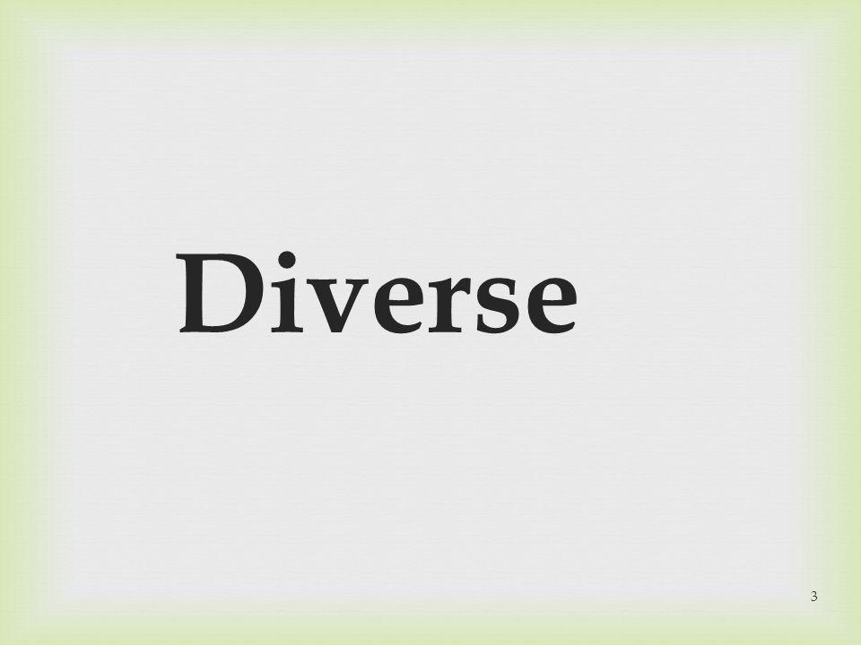 Diverse 3