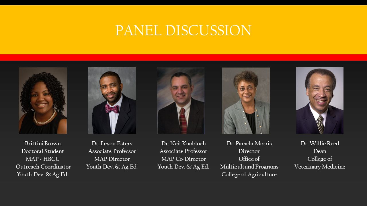 PANEL DISCUSSION Brittini Brown Doctoral Student MAP - HBCU Outreach Coordinator Youth Dev.
