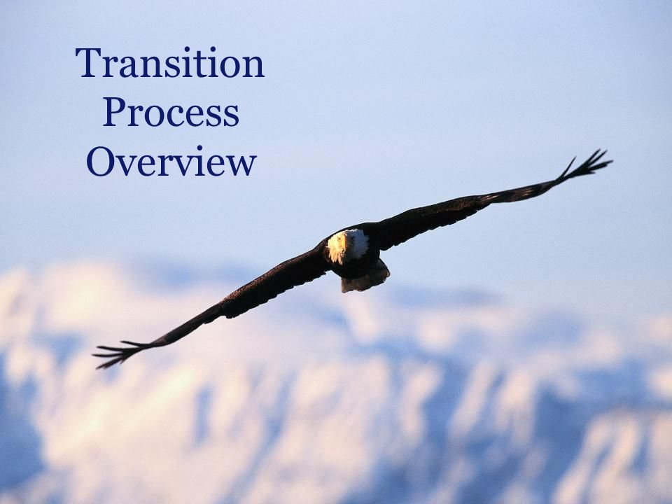 Massachusetts Department of Elementary and Secondary Education 13 Transition Process Overview