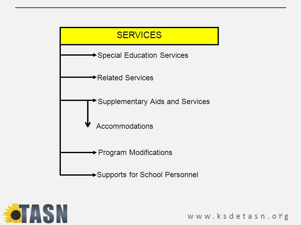 www.ksdetasn.org SERVICES Special Education Services Related Services Supplementary Aids and Services Program Modifications Supports for School Personnel Accommodations 41